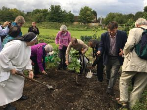 Br.D-Planting at WF allotment