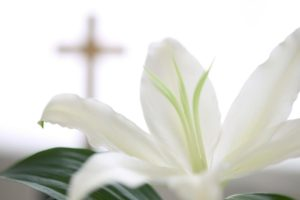 Funeral_Lilly_Cross